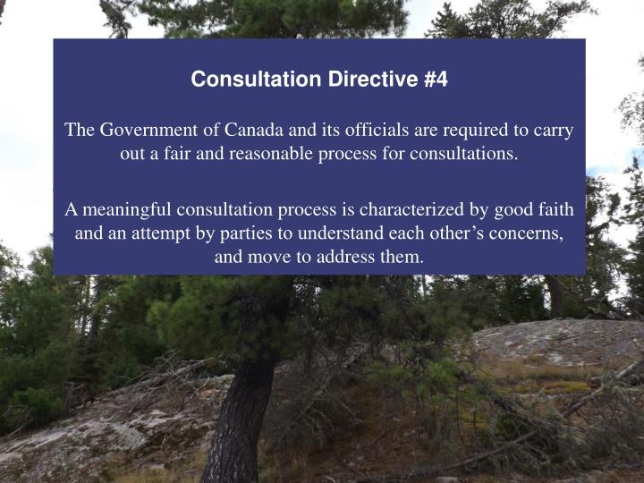 Consultation Directive #4