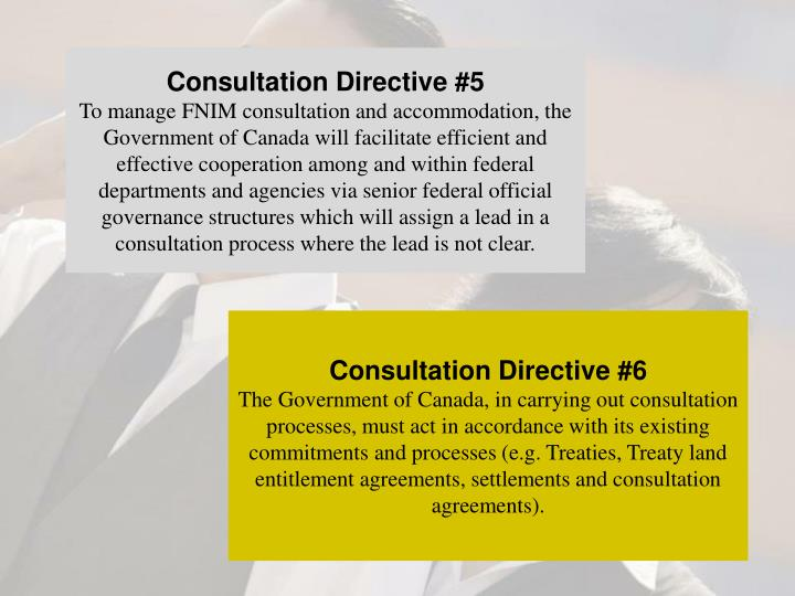Consultation Directive #5