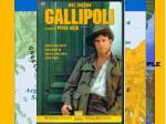 feb 1915 gallipoli campaign begins