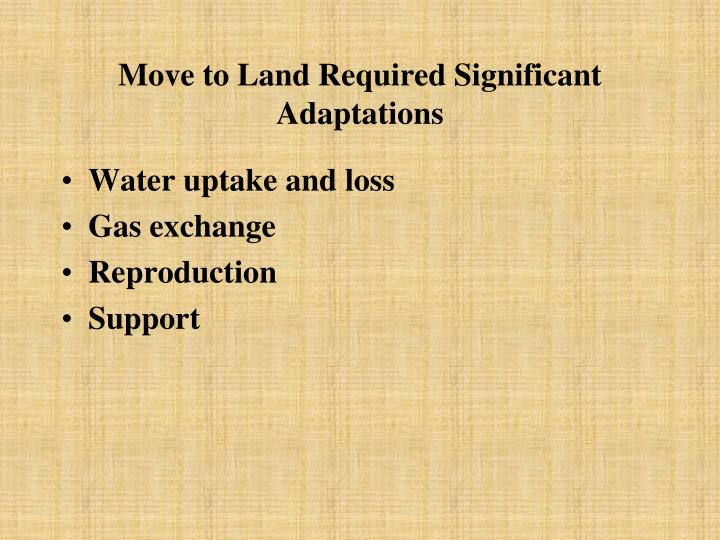 Move to land required significant adaptations