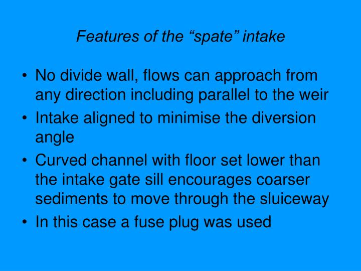 """Features of the """"spate"""" intake"""