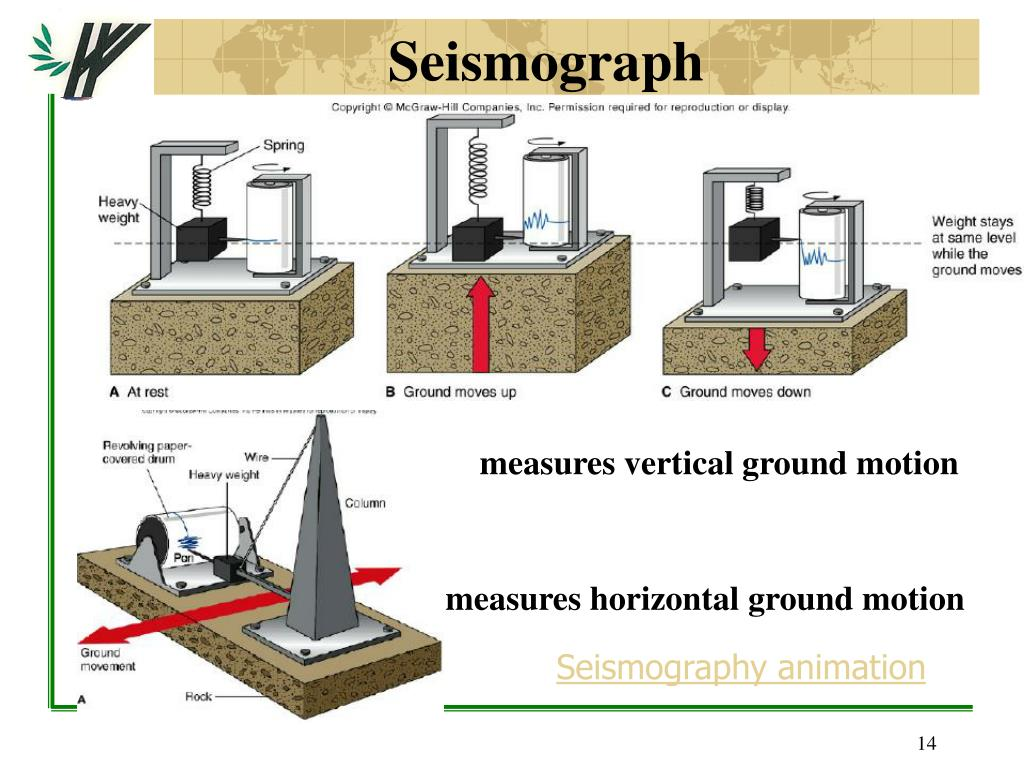 Seismografi