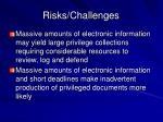 risks challenges