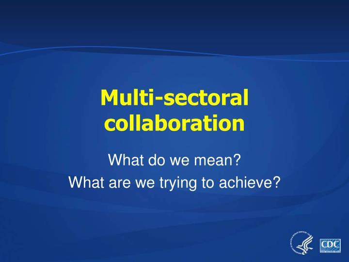 Multi sectoral collaboration
