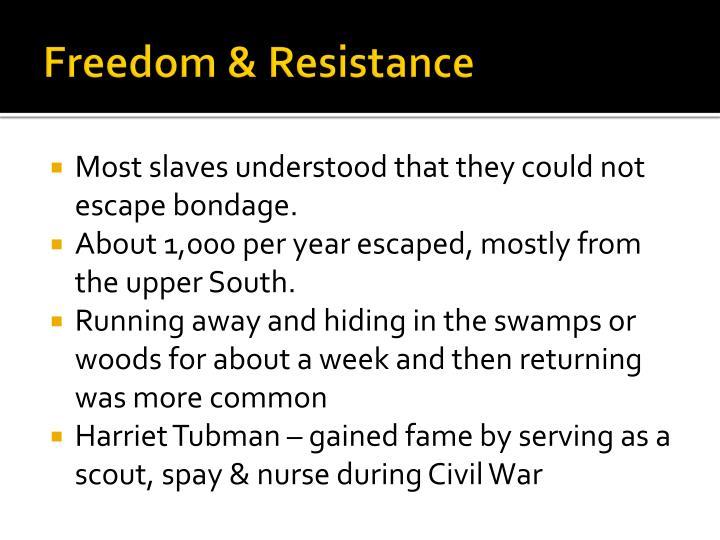 Freedom & Resistance