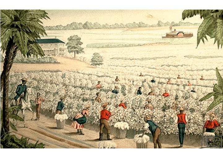 The south slavery
