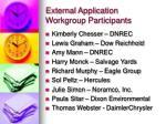 external application workgroup participants