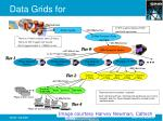 data grids for high energy physics