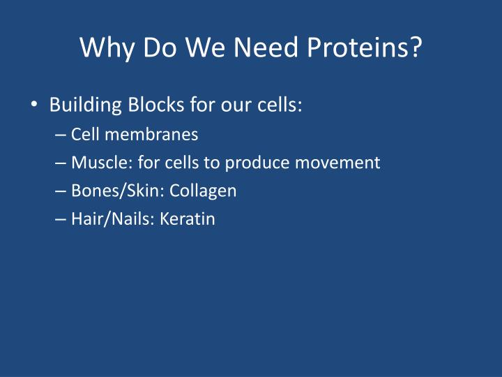 Why Do We Need Proteins?