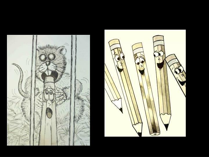 More Illustrations