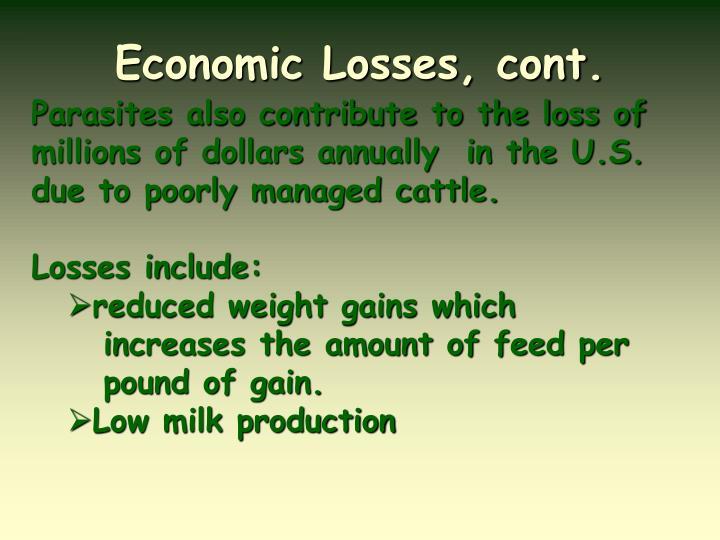 Economic Losses, cont.