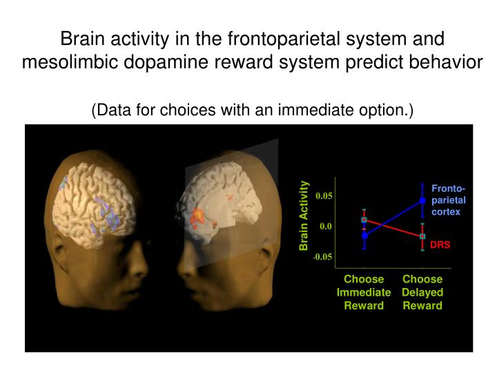 Brain activity in the frontoparietal system and mesolimbic dopamine reward system predict behavior