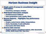 horizon business insight
