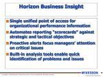 horizon business insight1