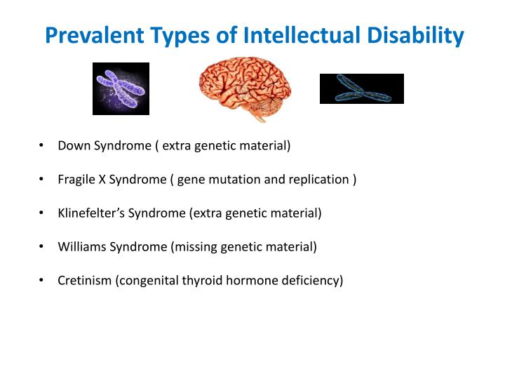 Prevalent Types of Intellectual Disability