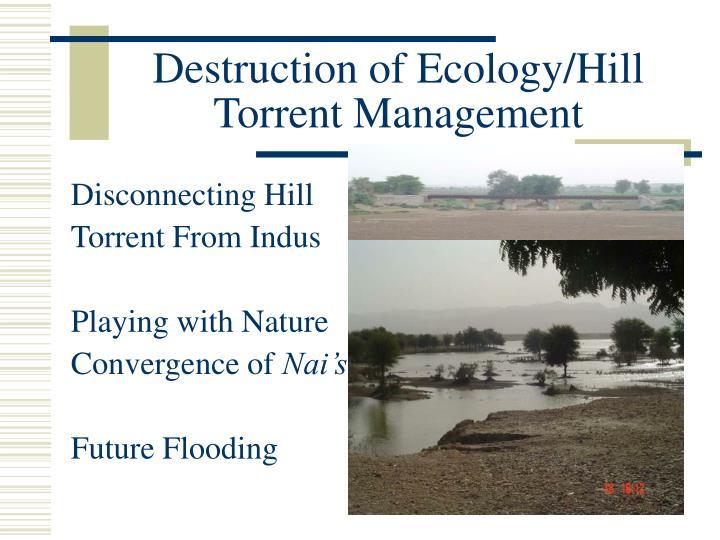 Destruction of Ecology/Hill Torrent Management