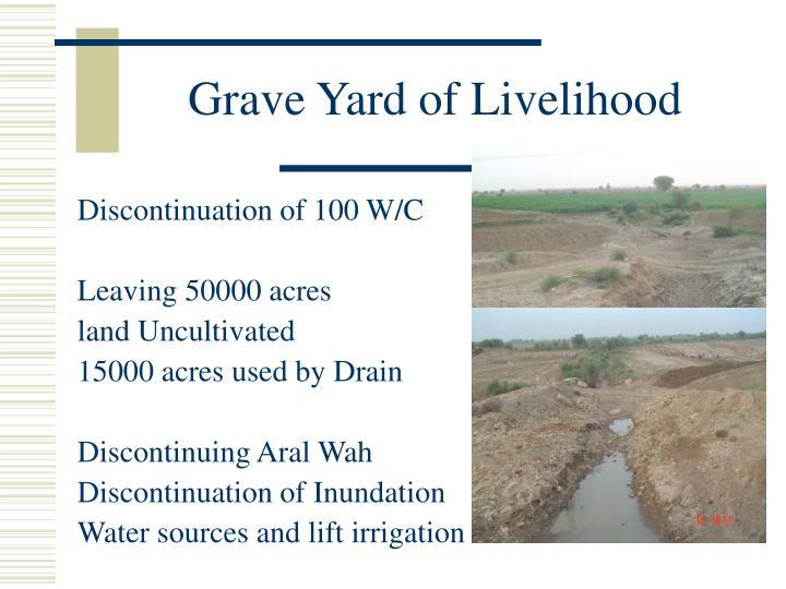 Grave Yard of Livelihood