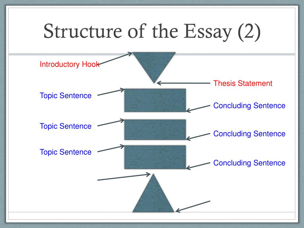 Writing scholarship essay