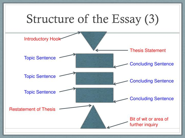 Structure of the Essay (3)