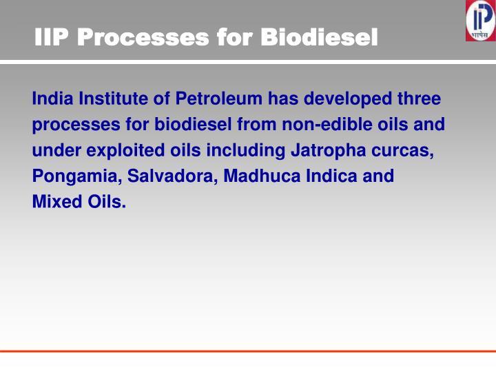 IIP Processes for Biodiesel