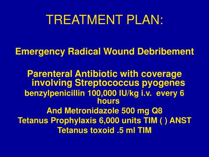 TREATMENT PLAN: