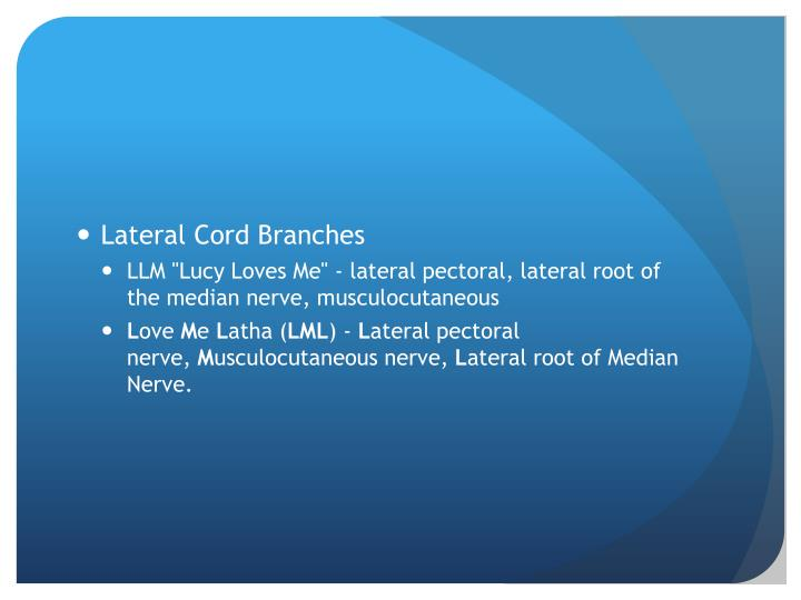 Lateral Cord Branches