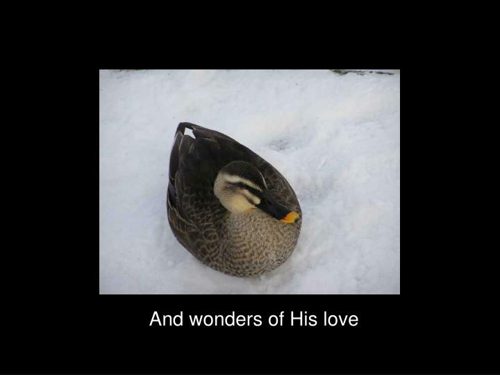 And wonders of His love