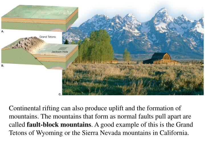 Continental rifting can also produce uplift and the formation of mountains. The mountains that form as normal faults pull apart are called