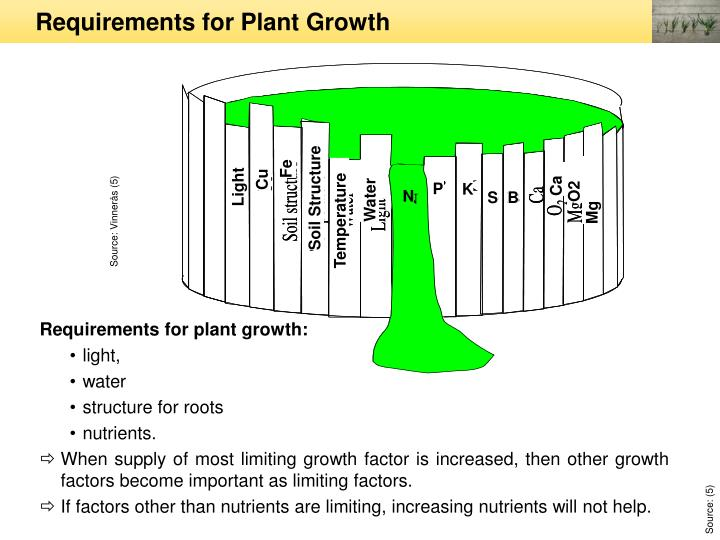 Requirements for plant growth