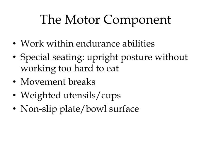 The Motor Component