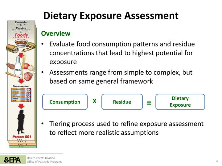 processes used to evaluate dietary supplements essay Home » dietary supplements questions to ask before taking vitamin and mineral supplements last modified: sep-25-2018 nutritiongov home.
