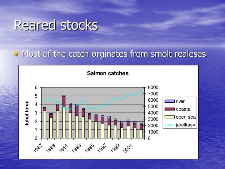 Reared stocks