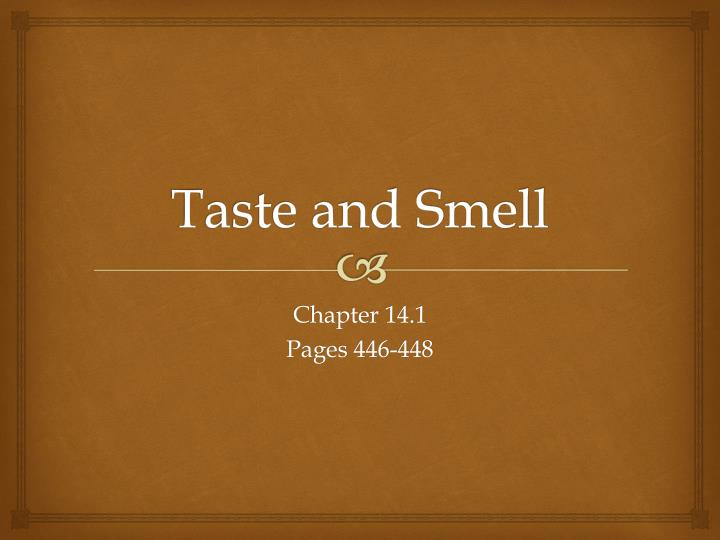 taste and smell n.
