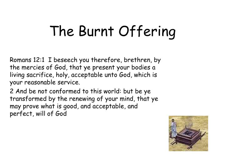 the burnt offering n.