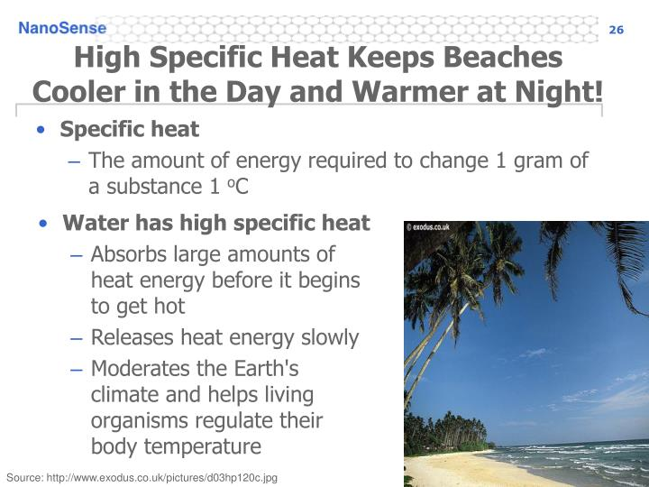 High Specific Heat Keeps Beaches Cooler in the Day and Warmer at Night!
