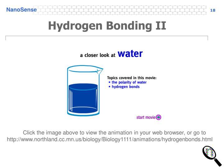 Hydrogen Bonding II