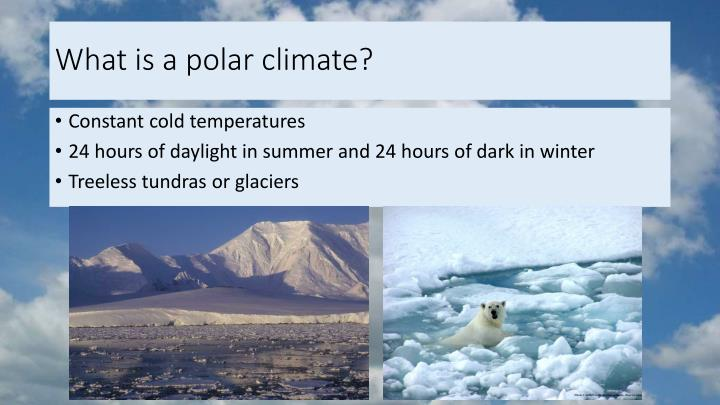 What is a polar climate?