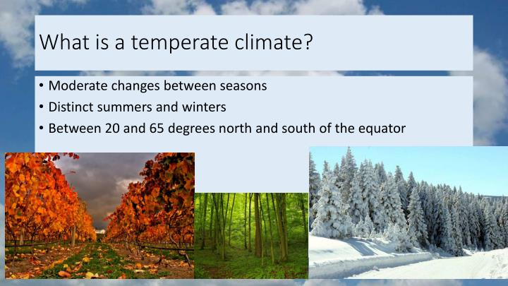 What is a temperate climate?