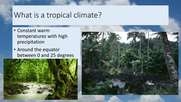 What is a tropical climate?
