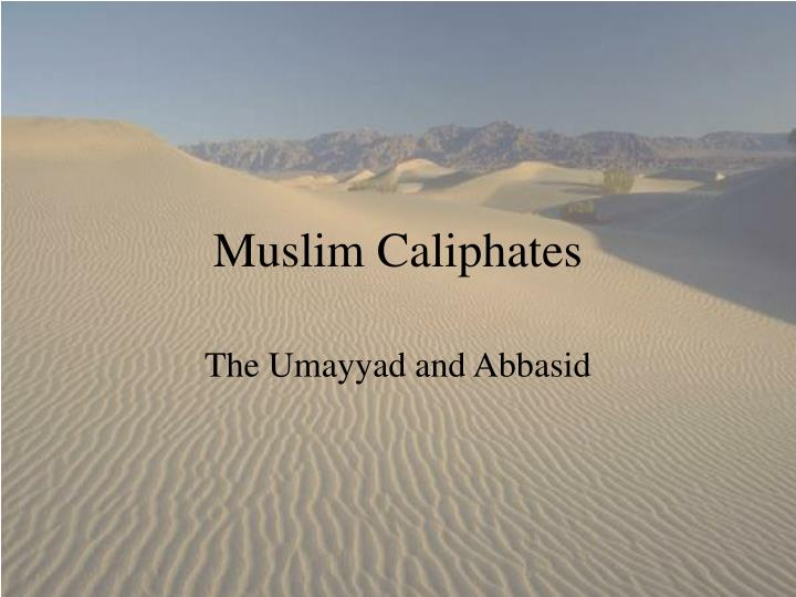 comparison of the three muslim empires