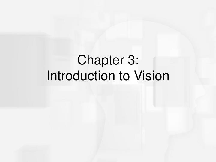 chapter 3 introduction to vision n.