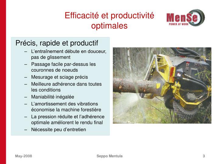 Efficacit et productivit optimales