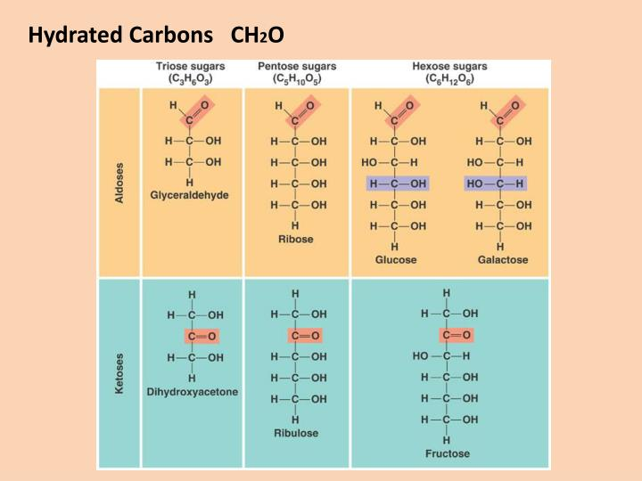 Hydrated Carbons   CH