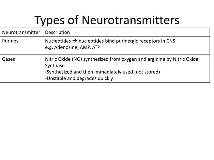 Types of Neurotransmitters
