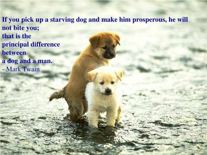 If you pick up a starving dog and make him prosperous, he will not bite you;