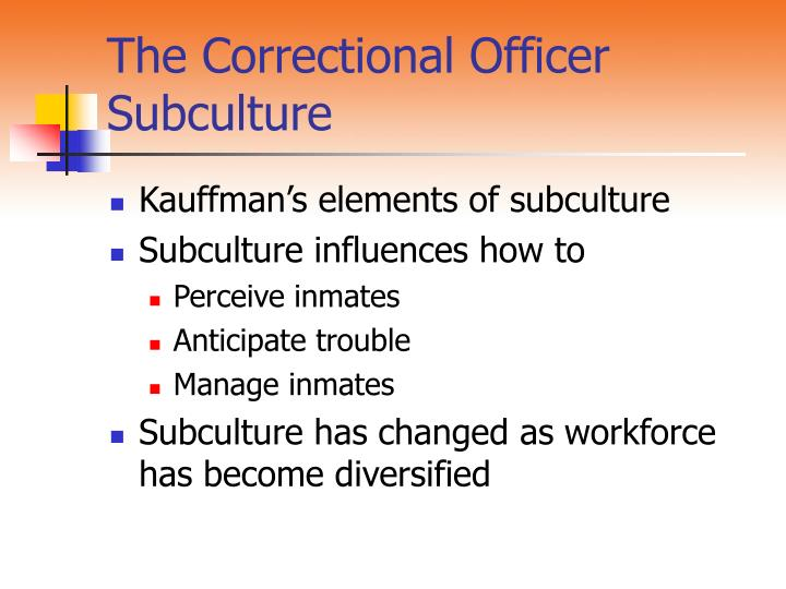 The Correctional Officer Subculture