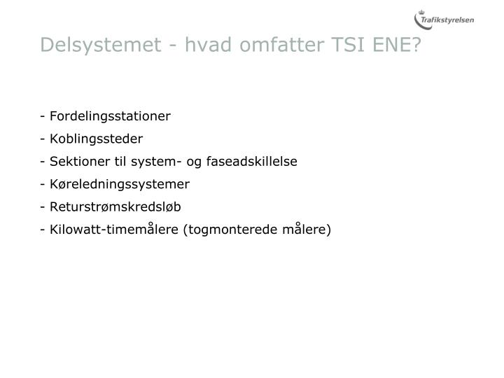 Delsystemet - hvad omfatter TSI ENE?