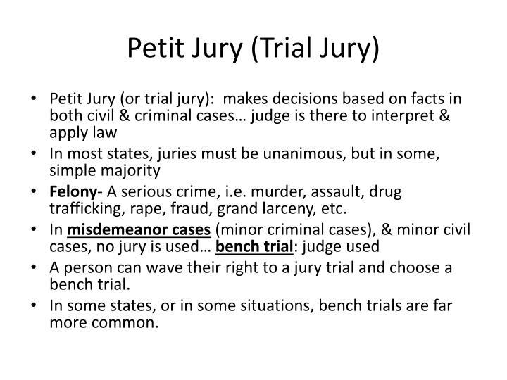 Petit Jury (Trial Jury)