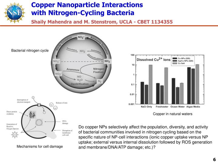Copper Nanoparticle Interactions