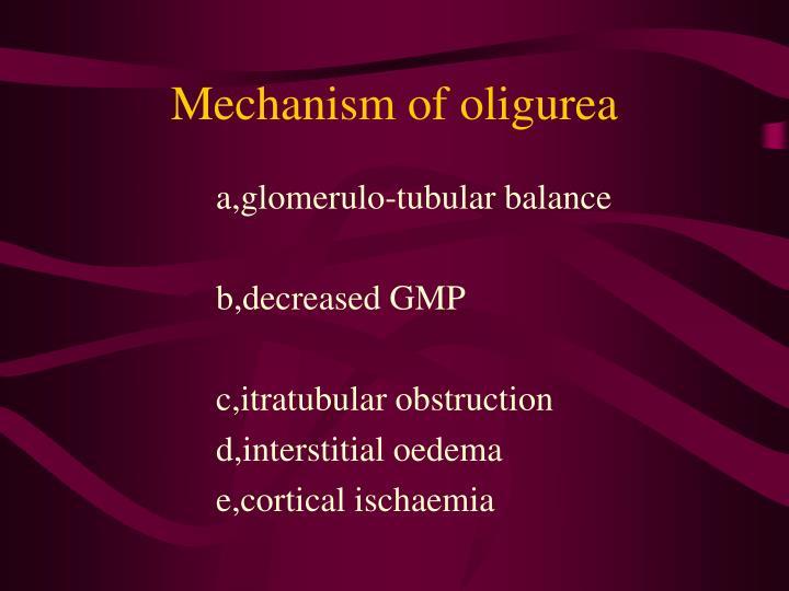 Mechanism of oligurea